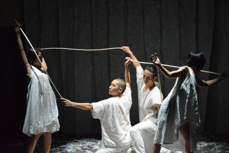 記事「Washi+Performing Arts? Project Vol.3 「風の強い日に」をTPAM2018(国際舞台芸術ミーティング)にて公演」の画像