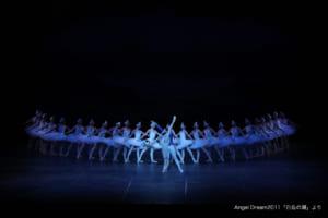 記事「【オーディション情報!】生オーケストラで踊る「白鳥の湖-全幕-」出演者募集!」の画像