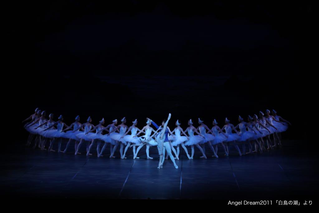 締切まもなく!【オーディション情報!】生オーケストラで踊る「白鳥の湖-全幕-」コールド出演者募集!