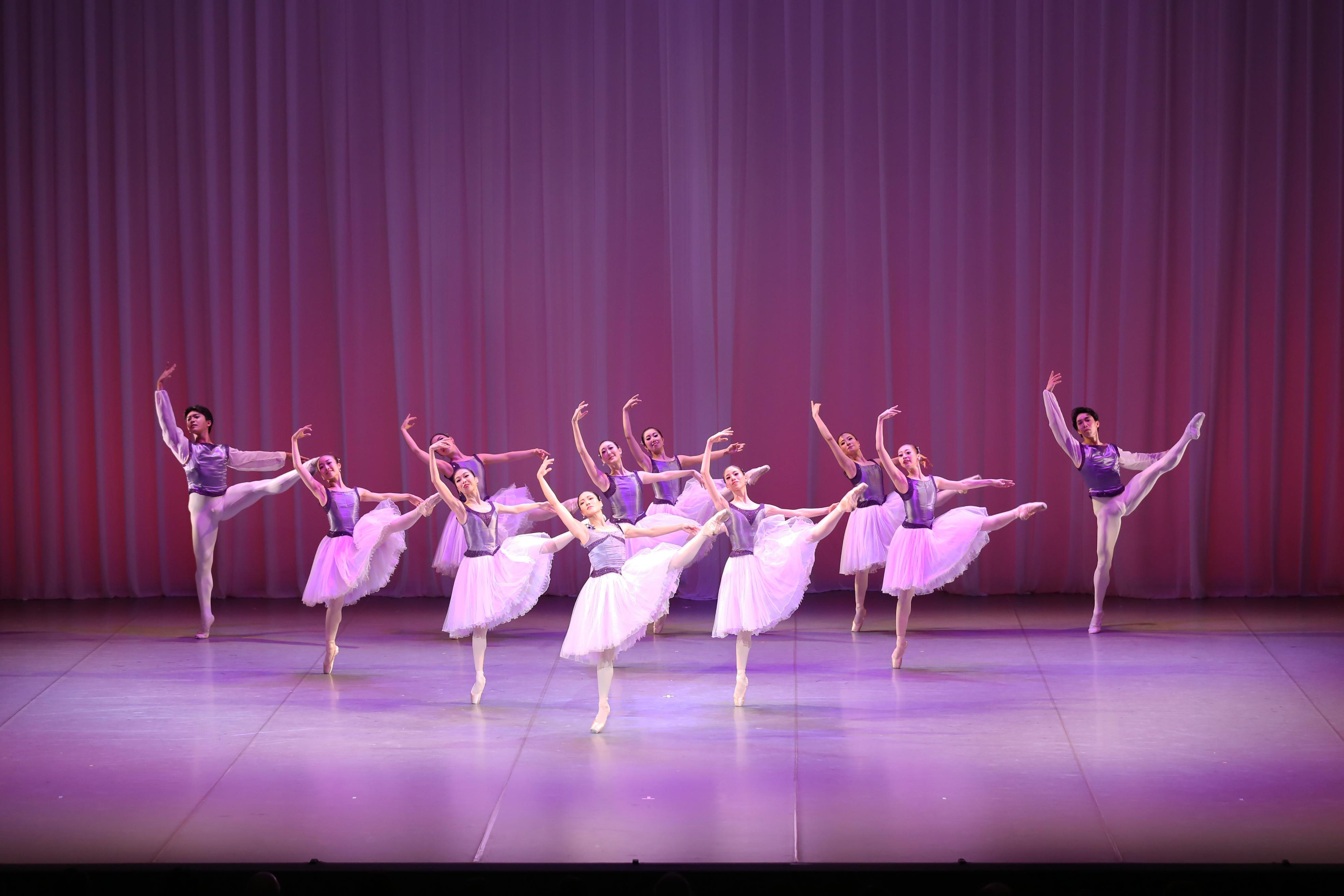 記事「NEW!【オーディション情報】大和シティーバレエ新規団員募集」の画像